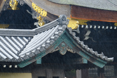 Rainy day at The Imperial Palace, Kyoto Japan