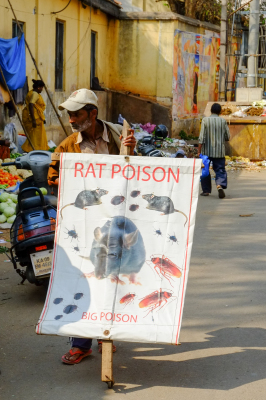 Rat Posion Mysore India